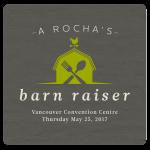 A Rocha's Barn Raiser Image